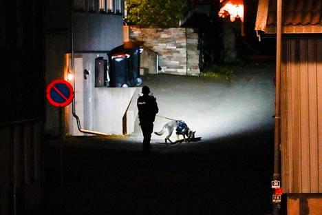 Norjan poliisilla oli Kongsbergissä apunaan poliisikoira.