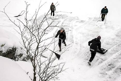 Vapaaehtoiset kasasivat lumikinoksia norppien pesäpaikoiksi Saimaalla helmikuun alussa.