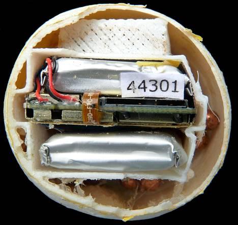 Valemunien kuoret tulostettiin pehmeästä muovista 3d-tulostimella. Niiden sisälle sijoitettiin gsm-lähetin ja gps-paikannin sekä kaksi akkua. Munat lähettivät sijaintitiedon tunnin välein.