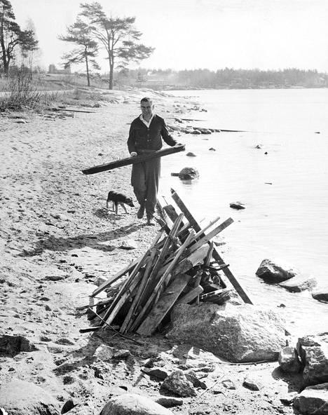 Valvoja koiranpentu seuranaan siistii rantaa kesäkuntoon 1964. Mutta mikä rantsu on kyseessä?