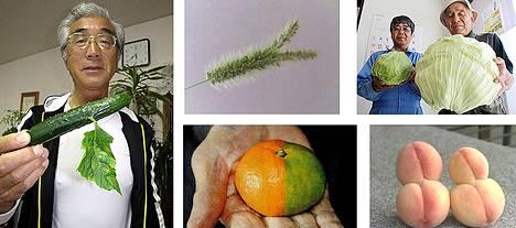 Valokuvia omituisen näköisistä vihanneksista on julkaistu useilla verkkosivuilla. Niiden alkuperä on kuitenkin epäselvä.