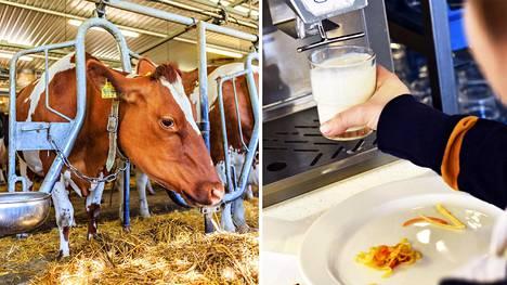 Lihan ja maidon tuottaminen aiheuttaa tutkijoiden mukaan kasvihuonekaasupäästöjä, rehevöitymistä, happamoitumista ja sukupuuttoja.