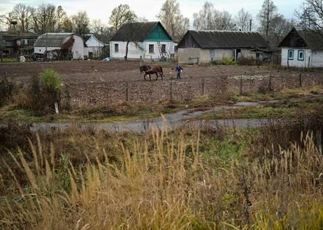 Mies pellollaan Peremohassa. Neuvostoliiton romahdettua vuonna 1991 Ukrainan kolhoosien ja sovhoosien maat jaettiin niiden työntekijöille. Noin seitsemästä miljoonasta ihmisestä tuli parin kolmen hehtaarin tilojen omistajia.