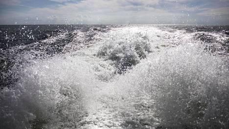 Itämeren ongelmat piilevät suurelta osin pinnan alla. Rehevyyttä ylläpitää Itämeren pääaltaan heikko tila, joka heijastuu yhä pidemmälle Suomenlahdelle sekä Saaristomerelle ja Selkämerelle saakka
