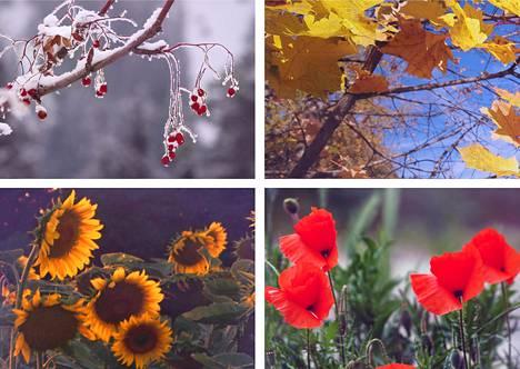 Kuukausien nimistä oikeastaan vain syyskuu viittaa vuodenaikaan. Kesäkuukin voi tulla vuodenajasta, mutta oikeasti viitannee kesantoon eli viljelemättömään peltoon.