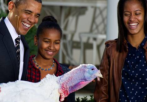 Barack Obama sekä tyttäret Sasha (kesk.) ja Malia tervehtivät torstaina lahjakalkkunaa, jonka presidentti tavan mukaisesti armahti uunilta.