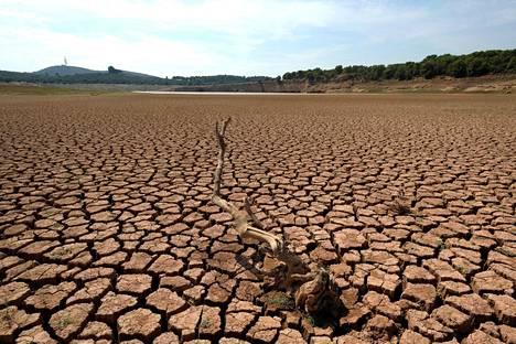 Kulunut kesä oli Euroopassa poikkeuksellisen kuuma ja kuiva. Joenuoma Espanjan Castellónissa oli kuivunut 14. syyskuuta.