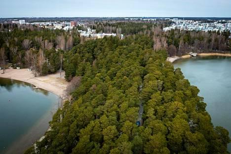 Näkymä Kallahdenniemeltä Kallahteen ja Meri-Rastilaan. Kallahti on ainoa vuonna 1984 vahvistetun harjujensuojeluohjelman kohde Helsingissä.