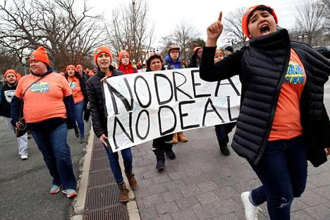 """Aktivistit osoittivat mieltään """"unelmoijien"""" maahan jäämisen sallimisen puolesta Yhdysvaltain senaatin edustalla Washingtonissa joulukuussa."""