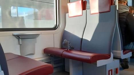 Pulu tuli I-junalla Helsingin päätepysäkille saakka.