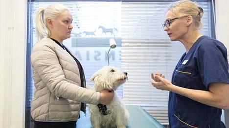 Eläinlääkäri Kirsti Schildt ohjeistaa Noomi-koiran omistajaa Jenny Lehtistä.