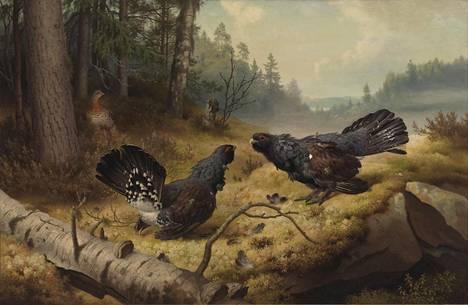 Ferdinand von Wrightin Taistelevat metsot (1886) on Suomen kansallisteoksia.