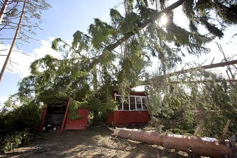 Myrsky kaatoi puita mökin päälle Konnevedellä vuonna 2010.
