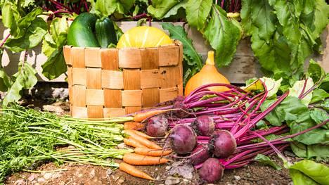 Suomalaiset syövät edelleen liian vähän kasviksia. Yksi syy voi olla niiden voimakas maku, joka voidaan kokea epämiellyttävänä. Makua voidaan muokata esimerkiksi maustamalla vihanneksia.