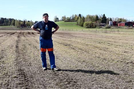Maanviljelijä Antti Timonen ja hanhien syömä heinäpelto Kiteenlahdenaukean mailla. Taustalla vihertää syömätön rinnepelto, joka on riittävän lähellä asutusta.