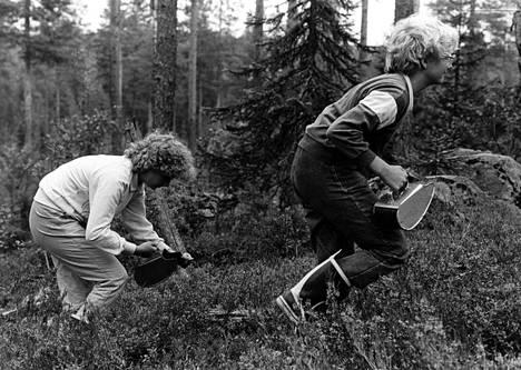 Marjastamisen suosio vähenee. Mervi Kotilainen ja Ulla Hyvärinen kävivät marjassa Nurmeksessa elokuussa 1983.