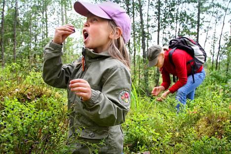 Mustikanpoiminta voinee jatkua, vaikka ekinokokkia levittäviä eläimiä löydettäisiin Suomesta.
