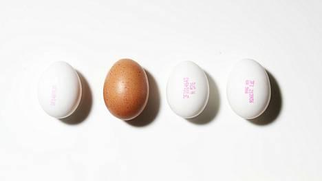 Kananmunan kuoressa olevan leiman ensimmäinen numero kertoo tuotantotavan. 0 merkitsee luomua, 1 ulkokanalaa, 2 lattiakanalaa ja 3 virikehäkkikanalaa.