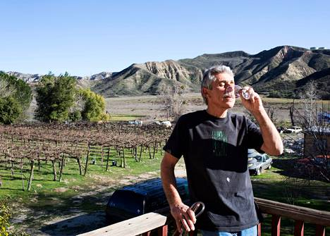 Kalifornialainen viiniharrastaja Danny Mascari kasvattaa takapihallaan Cabernet Sauvignon ja Sangiovese -rypäleitä.