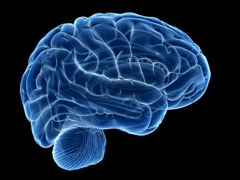 Koehenkilö sai peliohjeita aivoihinsa suoraan pelikavereiden aivoista.