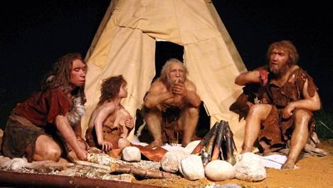 Neandertalinihmiset ja nykyihmiset pystyivät lisääntymään keskenään ja vaikuttivat toistensa vastustuskykyynkin.