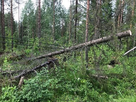 Myrskyn tuhoja Lastukoskella Pohjois-Savossa keskiviikkona.