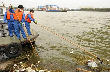 Työntekijät onkivat sianraatoja joesta Shanghaissa maanantaina.