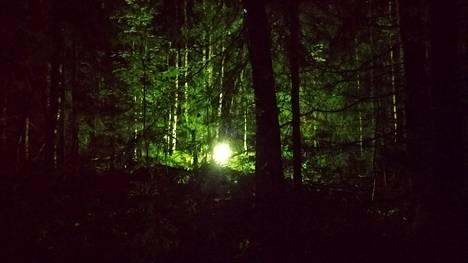 Metsässä hohtava valo on melko piilossa, mutta Arien Neulaniemen lenkkipolun varrelta se erottuu iltaisin selvästi.