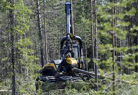 Ponssen metsäkone työssään Suomussalmella.