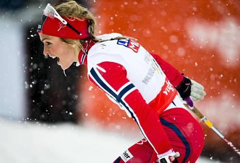 Therese Johaug joutuu jättämään ensi talvena käytävät talviolympialaiset väliin kilpailukiellon takia. Falun MM-kisoissa 2015 hän voitti kolme kultamitalia.