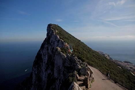 Turistit menivät katsomaan Gibraltarin apinoita aiemmin tällä viikolla.