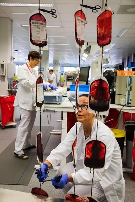 Luovutettuja verihiutalepusseja käsitellään Kivihaassa.