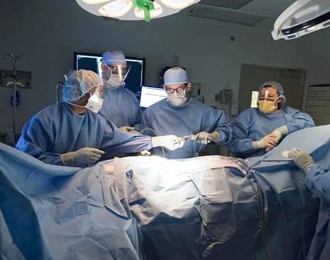Umpilisäkkeen poistoa opetetaan kirurgiaan erikoistuville. Valokuva ei ole suomalaisesta leikkaussalista.