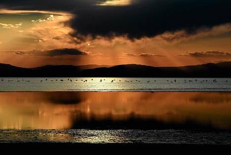 Auringonlasku Salton Sea -järvellä Kaliforniassa. Osavaltion suurimmalla järvellä on ympäristöongelmia, kun vedenpinta laskee, suolapitoisuus kasvaa ja levän määrä lisääntyy.