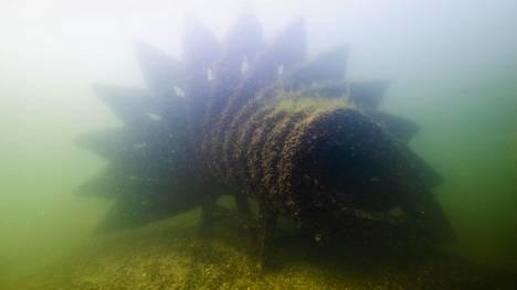 Kalakoto-taideteos upotettiin pohjaan vuonna 2011. Kolme vuotta myöhemmin Turun suomalaisen yhteiskoulun lukion oppilaiden veistoksia upotettiin vedenalaiseksi veistospuistoksi.