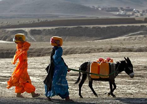 Kochi-naiset kuljettivat vettä sekä päänsä päällä että aasin selässä lähellä Maidan Sharin kaupunkia Wardakin maakunnassa Afganistanissa syyskuun alussa.