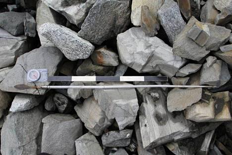 Löydetty nuoli noin vuodelta 700.