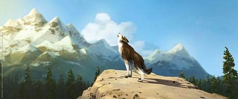 Valkohammas on Kanadan erämaassa elävä koirasusi.
