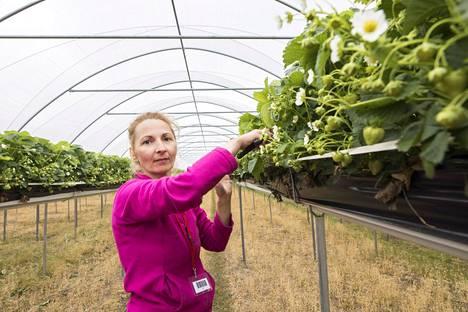 Kausityöntekijä Ariadna Kosheleva aikoo työskennellä Suonenjoella kaksi kuukautta.
