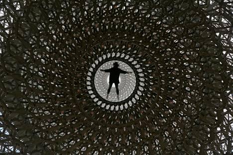 Kew Gardensin museon työntekijä kuvattiin Wolfgang Buttressin The Hive -veistoksen keskellä keskiviikkona Lontoossa.