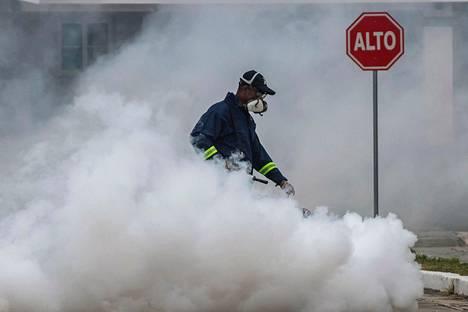 Työntekijä levitti hyönteismyrkkyä denguekuumetta levittäviä hyttysiä vastaan Panaman kaupungissa huhtikuussa.