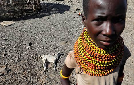 Keniaa ja muuta Itä-Afrikkaa riivasi keväällä kuivuus. Maassa näkyy kuollut vuohi.