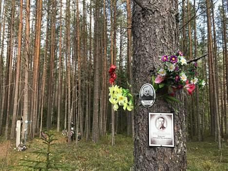 Kuva Josif Stalinin ajan vainojen teloituspaikalta Sandarmohista Venäjän Karjalasta. Kuvat otettu syyskuussa 2018.