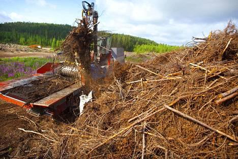 Bioenergiaa tehdään muun muassa hakkuujätteistä ja pienpuustosta.