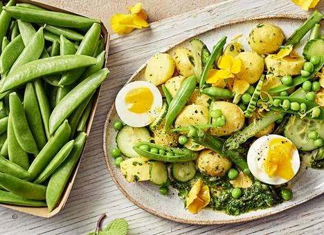 Grillattujen herkkujen pariksi sopii raikas salaatti uuden sadon kasviksista.