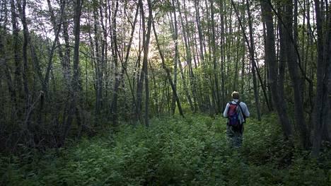 Seitsemän veljeksen vaellusreitti vie läpi vaihtelevien maisemien.