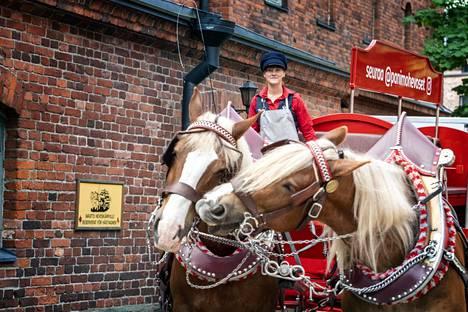 Hevosten talli sijaitsee Sinebrychoffin puiston kupeessa Bulevardilla. Vasemmalla Frederik ja oikealla Gunnar.
