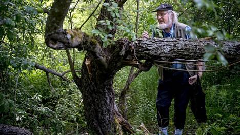 70-vuotias professori emeritus Jyrki Muona kiinnostui hyönteisistä jo lapsena. Nyt hän on palannut Vantaan Mätäojalle, jossa hän on tehnyt tutkimustyötä useita satoja tunteja ja löytänyt harvinaisen kovakuoriaisen - Halavasepikän.
