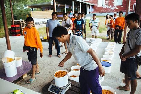 Thaimaalaisia marjanpoimijoita Lapissa vuonna 2014.