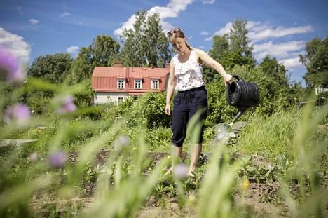 """Väitöskirjatutkija Krista Willman viljelee palstaa Tampereen Tahmelassa. """"Täällä käymisestä tulee aina hyvä olo."""""""